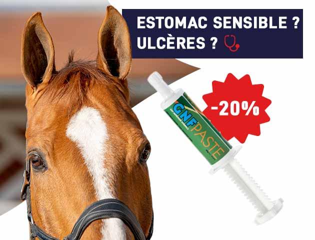 Soulagez votre cheval sensible