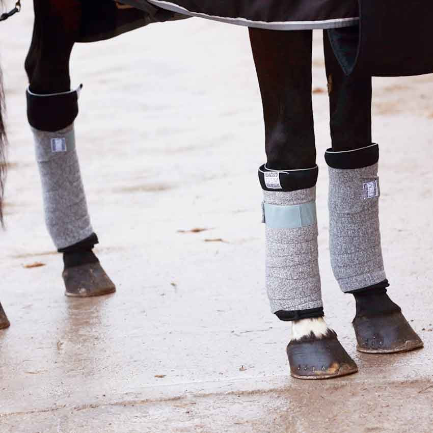 Bande de repos et stable boots : Tout savoir