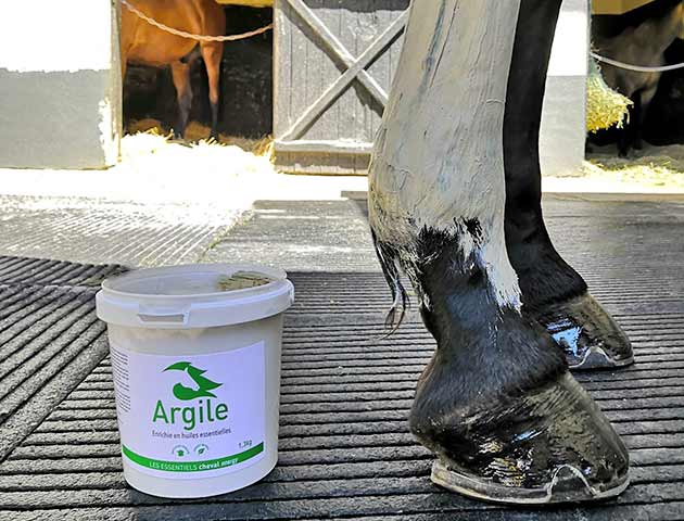 Argile : l'indispensable