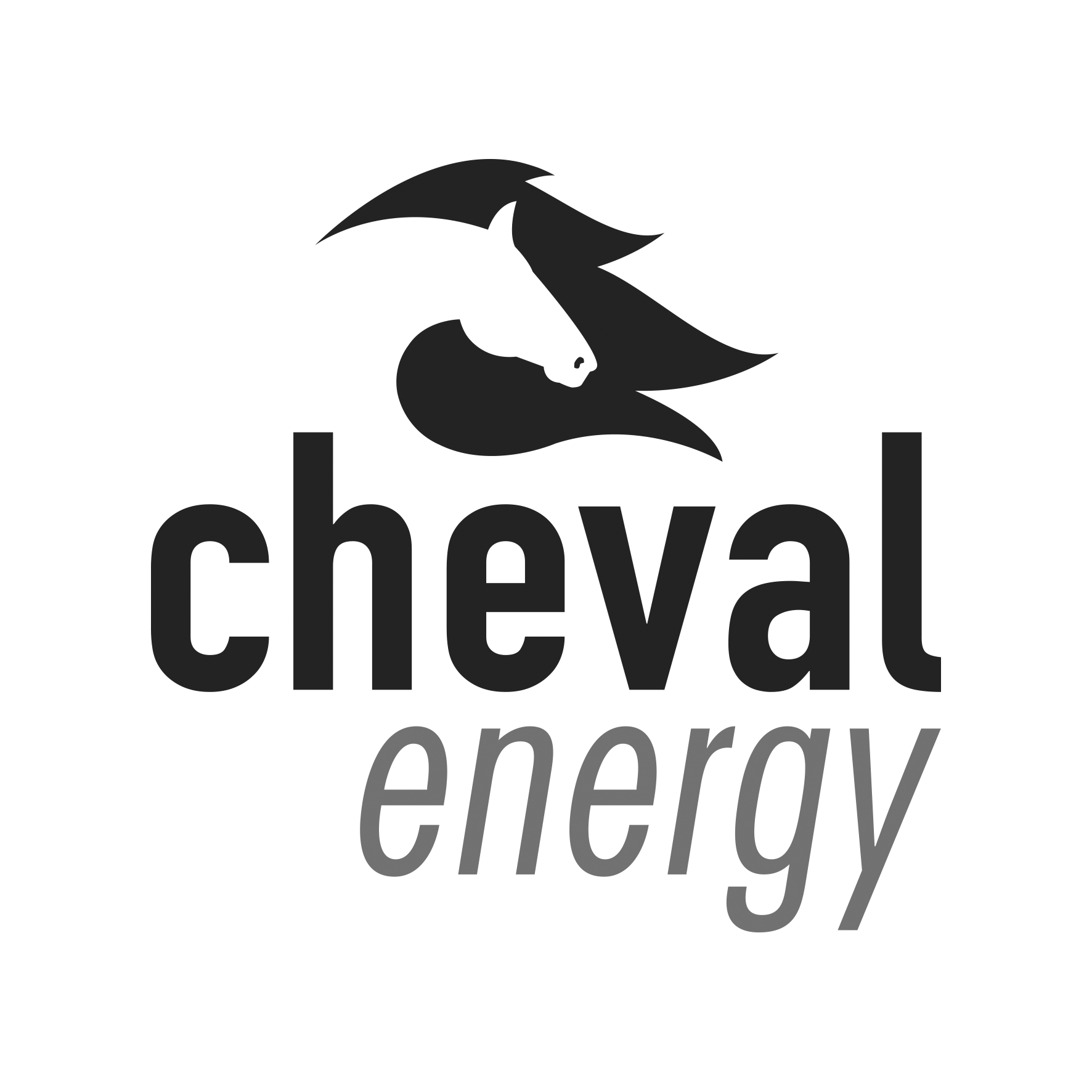 Cheval Energy logo